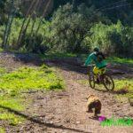"""""""Bicicleteando"""" con Moka en Málaga"""