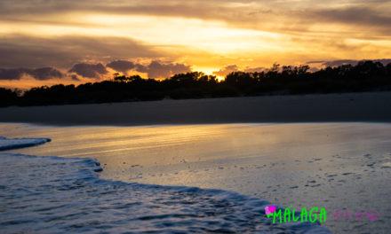 Top Five Beaches in Malaga